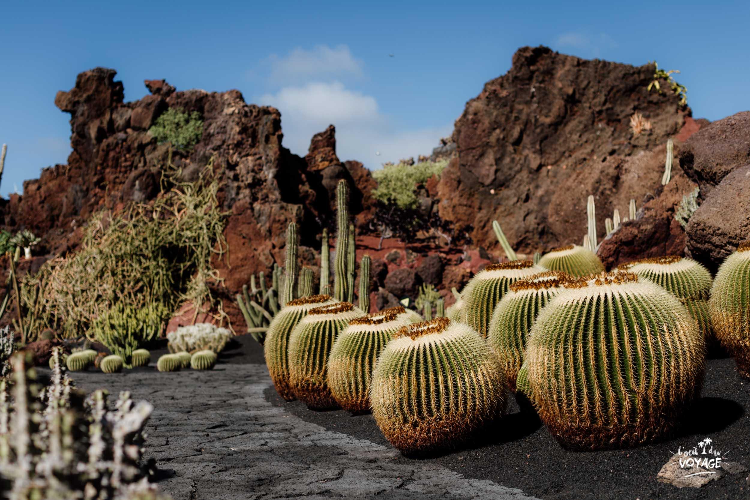 Jardin de Cactus à Guatiza, Lanzarote, par L'oeil de voyage, french travel blogger